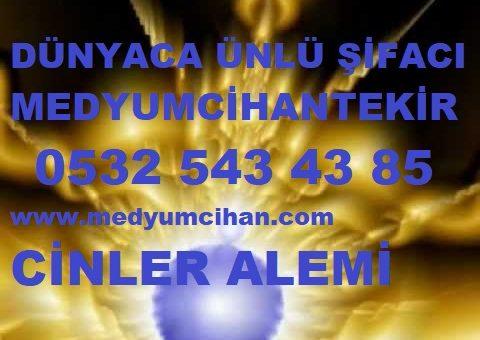 CİNLER ALEMİ